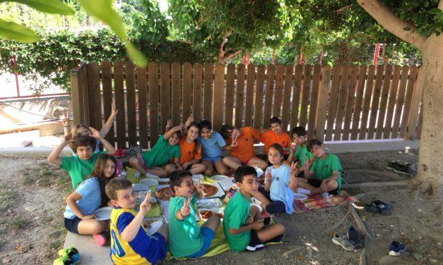 Η Β' Δημοτικού υποδέχεται το καλοκαίρι κάνοντας πικ-νικ