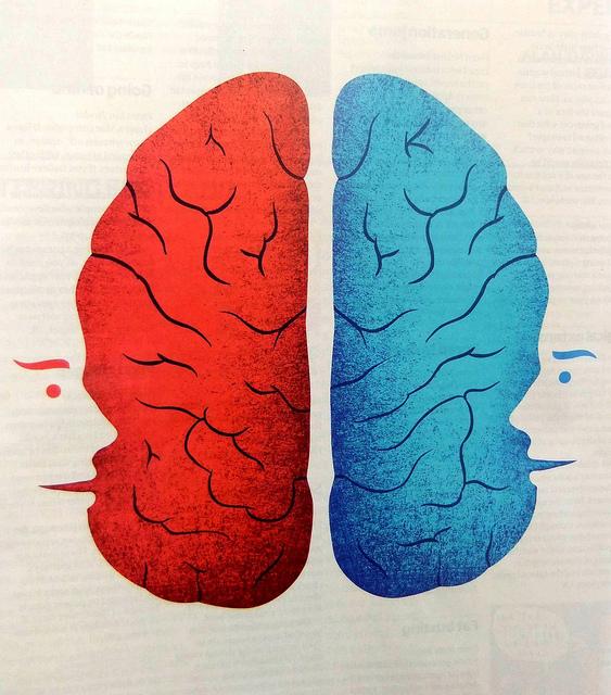 Τα δίγλωσσα παιδιά παρουσιάζουν αυξημένη εγκεφαλική δραστηριότητα στις περιοχές που σχετίζονται με ανώτερες γνωστικές διεργασίες